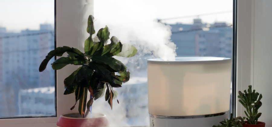 Рейтинг увлажнителей воздуха: 10 лучших моделей