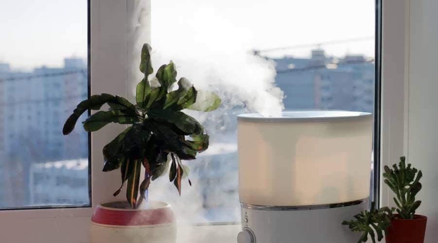 Рейтинг увлаженителей воздуха