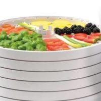 Топ-8 лучших моделей электросушилок для овощей и фруктов