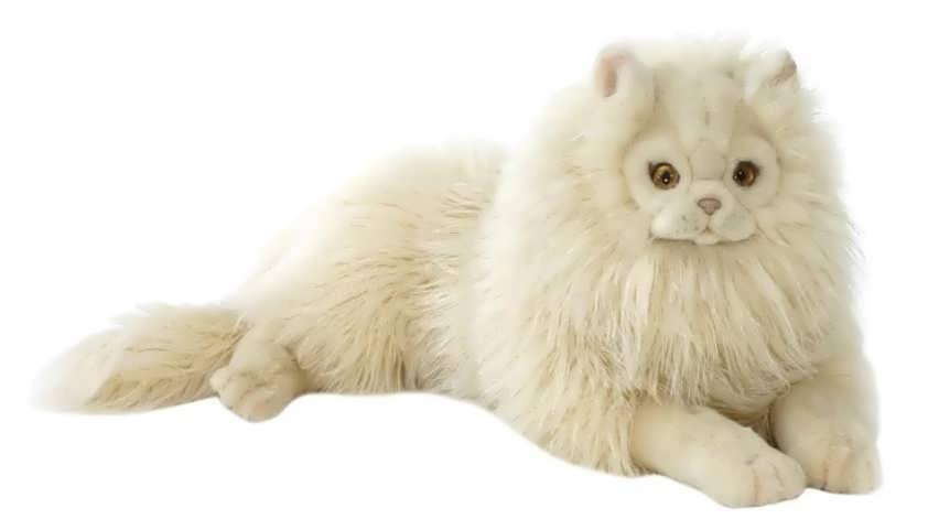 Hansa Персидский кот Табби